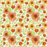 Soliga blommaanemoner Vektor Illustrationer
