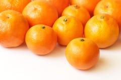 Soliga tangerin Arkivbild