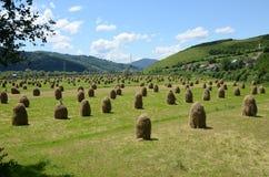 Soligt haycockland Fotografering för Bildbyråer