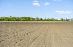 Soligt jordbruks- landskap arkivfoto