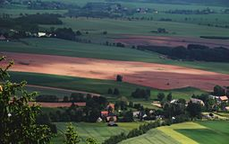 Soligt landskap Royaltyfria Bilder