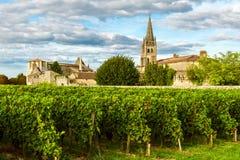 Soligt landskap av bordeauxvingårdar i Saint Emilion i den Aquitaine regionen, Frankrike arkivbilder