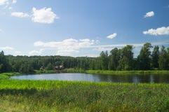 Soligt landskap för flod för sommardag royaltyfri foto