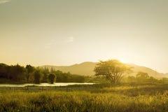 Soligt landskap för morgon Royaltyfri Fotografi