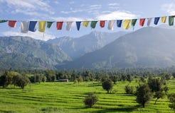 Himalayas Royaltyfria Foton
