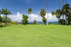 Soligt landskap med palmträd och havet i Barbados, Carib Royaltyfria Foton