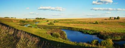Soligt sommarlandskap med guld- vetefält, floden och härliga träd royaltyfria bilder