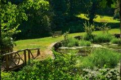Soligt trädgårds- damm med bänken arkivfoto