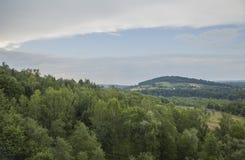Solina Lake, Zuid-Polen, Oost-Europa - weiden rond het stock foto's