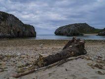 Solitair strand Stock Foto