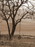 Solitaire. Sepia image of a swing under a tree stock image