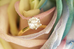 Solitaire ring on rose Royalty Free Stock Photography