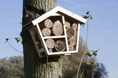 Solitary bee hotel Royalty Free Stock Photography