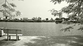 Solitary bench by lakeside royalty free stock photos