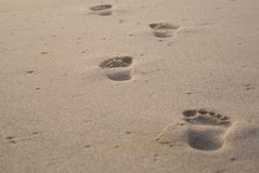 Solitary footprints in sand. On beach Royalty Free Stock Photos