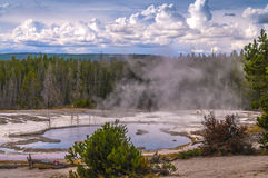 Solitary Geyser Stock Photo