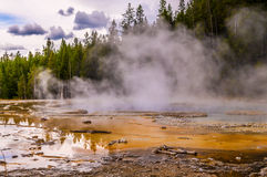 Solitary Geyser Royalty Free Stock Photography