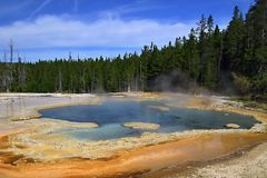 Solitary geyser Royalty Free Stock Images