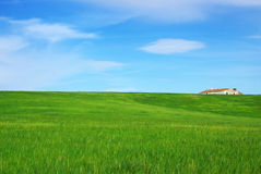 Solitary house in the green field. Royalty Free Stock Photos
