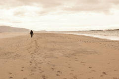 Free Solitary Man Taken From Behind Walking In An Empty Beach. Stock Image - 49818301