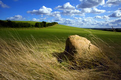 A solitary rock in a field. Royalty Free Stock Images