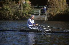 Solitary Rower, Royalty Free Stock Photo