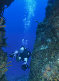 Solitary scuba diver between coral walls in Cozume Stock Photos