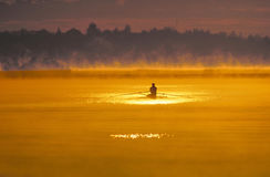 Solitary sculler Stock Photo