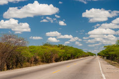 Solitary straight road. At La Guajira Colombia Royalty Free Stock Images