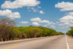Solitary straight road. At La Guajira Colombia Stock Images