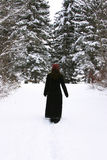 Solitary Walk in Winter Royalty Free Stock Photos