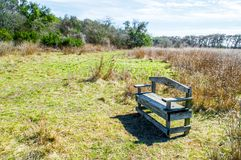 Weathered wooden bench in Texas prairie grass and green trees with morning sunlight. Solitary weathered wooden bench amid golden Texas prairie grass and lush royalty free stock image