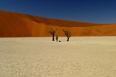 Solitude. Man alone in the middle of Deadvalley, Namibia Stock Photo
