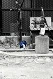 solitude Imagens de Stock Royalty Free