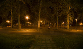 solitude Fotografia de Stock