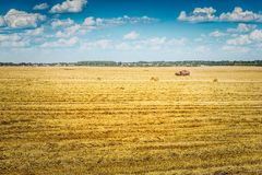Solitude combine harvester on wheat field at beautiful suuny day.  Royalty Free Stock Images