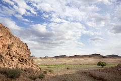Solitude in the desert Royalty Free Stock Images