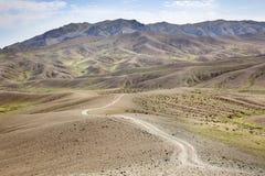 Solitude in the desert Stock Image