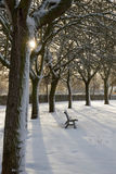 Solitude and Park Bench with Snow Empty Stock Image