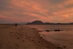 Solitude of a walk along a beach at dawn in Baja, Mexico. One person alone , the solitude of a walk along a beach at dawn on the Bay of California, also known as Royalty Free Stock Photography