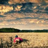 Solitudine dorata del campo Fotografia Stock
