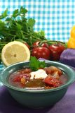 Soljanka with pickles and a dollop of cream. Soljanka in a soup bowl with pickles and a dollop of cream Royalty Free Stock Image