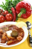 Soljanka in a soup bowl with bread Royalty Free Stock Photography