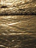 Solkatt för ljus för abstraktionbakgrundsvatten Arkivfoton