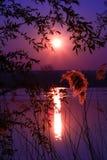 Solkatter i en sjö i afton fotografering för bildbyråer