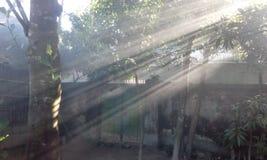 Sollöneförhöjning Arkivbilder