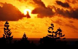 Sollöneförhöjning på Indiska oceanen Royaltyfri Foto