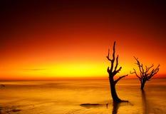 Sollöneförhöjning på jaktön Fotografering för Bildbyråer