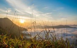 Sollöneförhöjninghav av mist i berg arkivbild