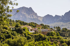 Soller countryside Stock Image
